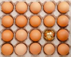 Golden egg. Standing out from the crowd concept. Overhead photo