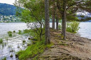isla vesleoye naturaleza en la ciudad fagernes fylke innlandet noruega. foto