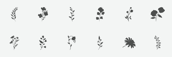 floral set of silhouettes of plants and flowers vector