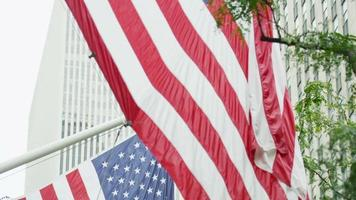 American flags flying in New York City video