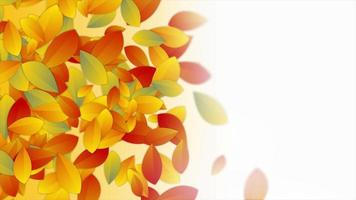 Autumn abstract motion design with colorful leaves video