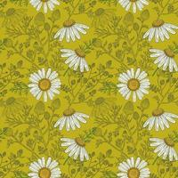 Medical Chamomile Branch and Flowers hand drawn green seamless pattern in a retro style vector