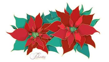 Blooming branch of poinsettia christmas plant. A branch of green and red silk leaves with a filigree golden line in an Asian trend. Elegant and luxurious decorations for the Christmas celebrations vector
