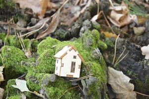 modelo de una pequeña casa de madera en el bosque foto