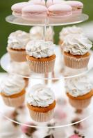 welcome buffet with alcohol and cupcakes photo