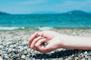 Hand holding pebbles on beach, turquoise sea water in background photo