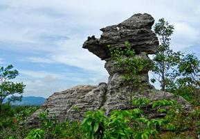 Cup shaped stone. The Pa Hin Ngam National Park in Chaiyaphum, Thailand photo