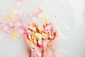 hands with pile petals photo