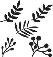 Hand drawn Botanical Plant background Illustration vector