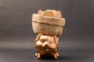 Piggy bank showing savings, income, investments, stocks photo