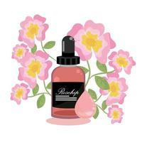 rosehip essential oil vector