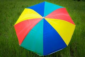 Cerrar coloridos paraguas colocados en los campos de arroz de siembra foto