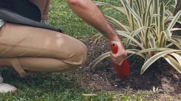 Asian man make small gardening at home. video