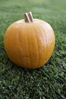Halloween pumpkins decoration photo