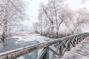 Escena de invierno en el jardín botánico, que muestra un puente sobre agua helada y árboles cubiertos de nieve fresca. foto