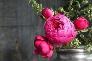 rosas rosadas en jarrón de plata vieja y plantas verdes foto