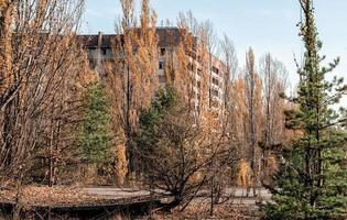 Pripyat, Ukraine, 2021 - Apartments being overtaken by the Chernobyl forest photo
