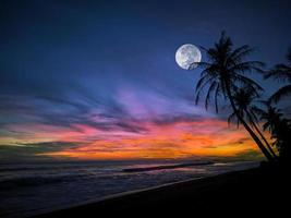 Tropical beach night photo