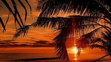 Tropical beach sunset photo