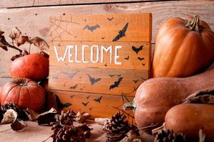 Welcome wooden sign with pile of pumpkins and pine cones photo