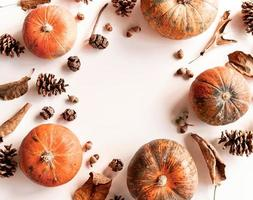 Pumpkins, pine cones, dry leaves and acorns in a circle frame top view on white photo