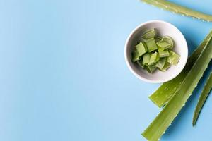 aloe vera slices and leaves top view on blue background with copy space photo