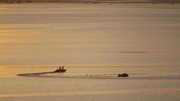 Boat at Sunrise on Mono Lake photo