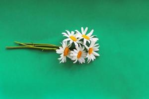 Bouquet of freshly picked chamomile flowers, Beauty Skin Care Healthy Infusions tea detox Concept photo