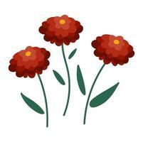 vector icono de crisantemo otoñal. Ilustración de flores simbólicas de acción de gracias. clipart floral de otoño. Linda cama de guardería plana aislada sobre fondo blanco.