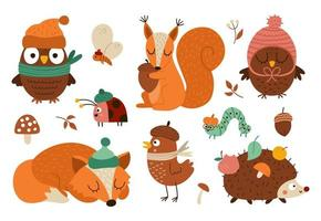 Vector Autumn forest animals and insects set. Cute hedgehog, squirrel, fox, bird, owl in hats and scarves. Vector fall or Thanksgiving characters collection. Woodland icons pack