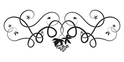 pattern ivy vine woven tree element. sketch doodle vector