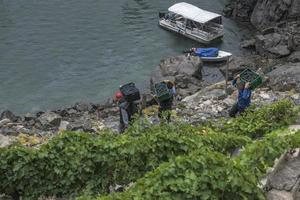 Lugo,Galicia, Spain,2021- Men carrying boxes of grapes down steep slopes to the motor boat that will transport them. photo