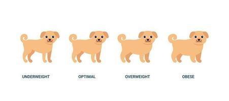 perro índice de masa corporal, mascota peso gráfico. bmi salud, bajo peso, óptimo, sobrepeso y obesidad. perro de jengibre animal de la casa. ilustración vectorial vector