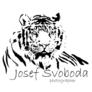 Click to view uploads for jssvobodajs608980