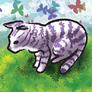 Kitty_on_grass