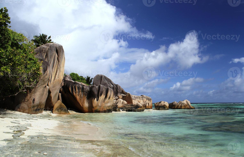 plage, zibellino, tropicale foto