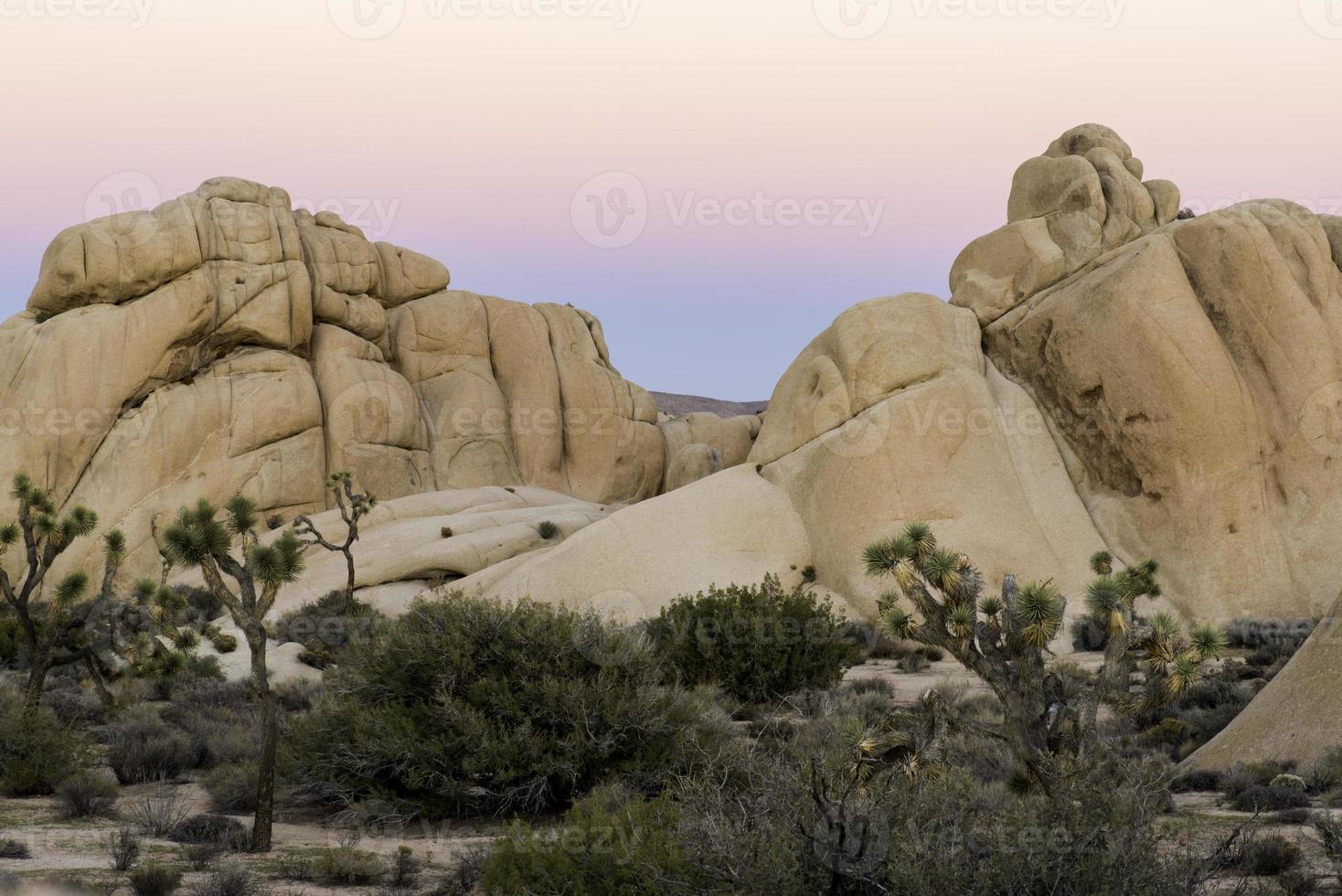 serata nel deserto foto