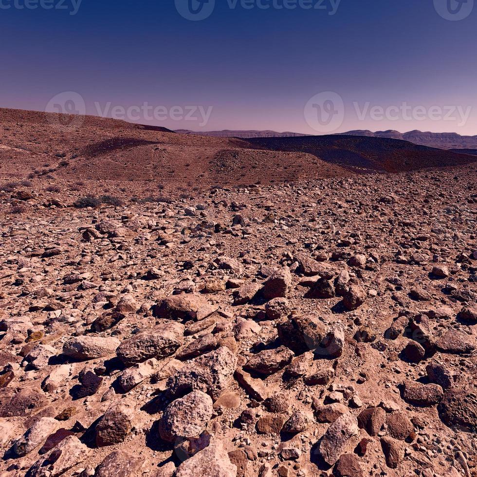 deserto del Negev foto