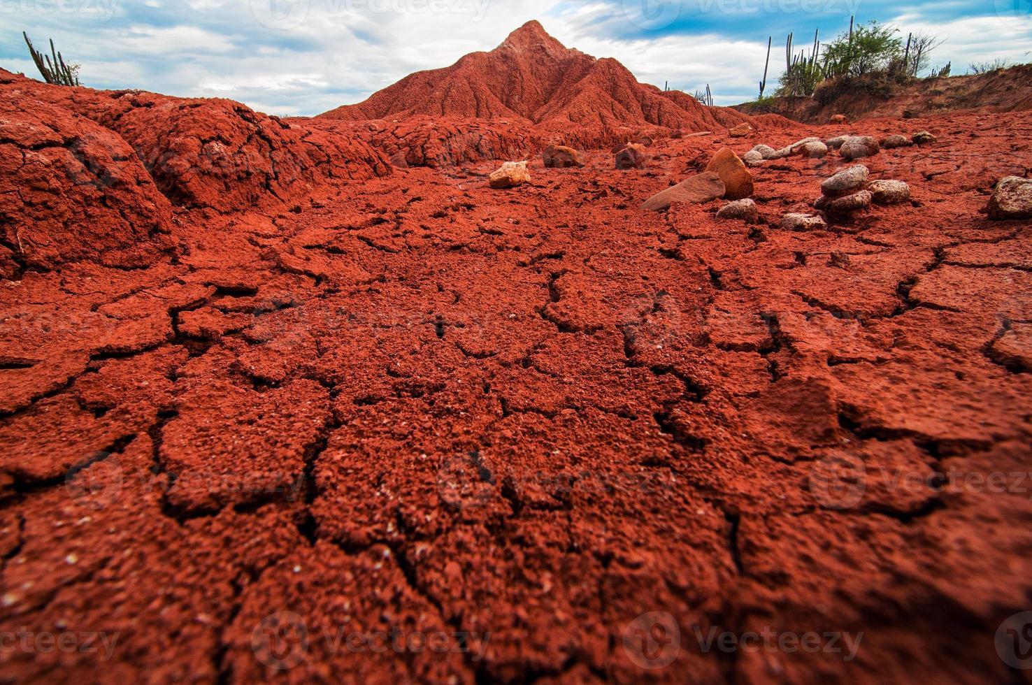dettagli del deserto foto
