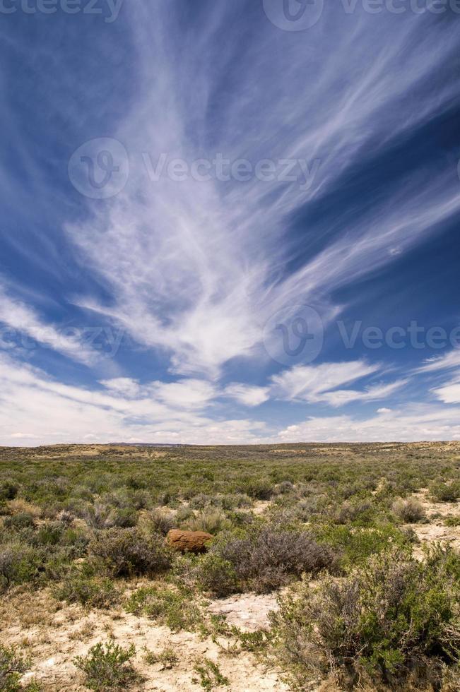 deserto del Wyoming foto