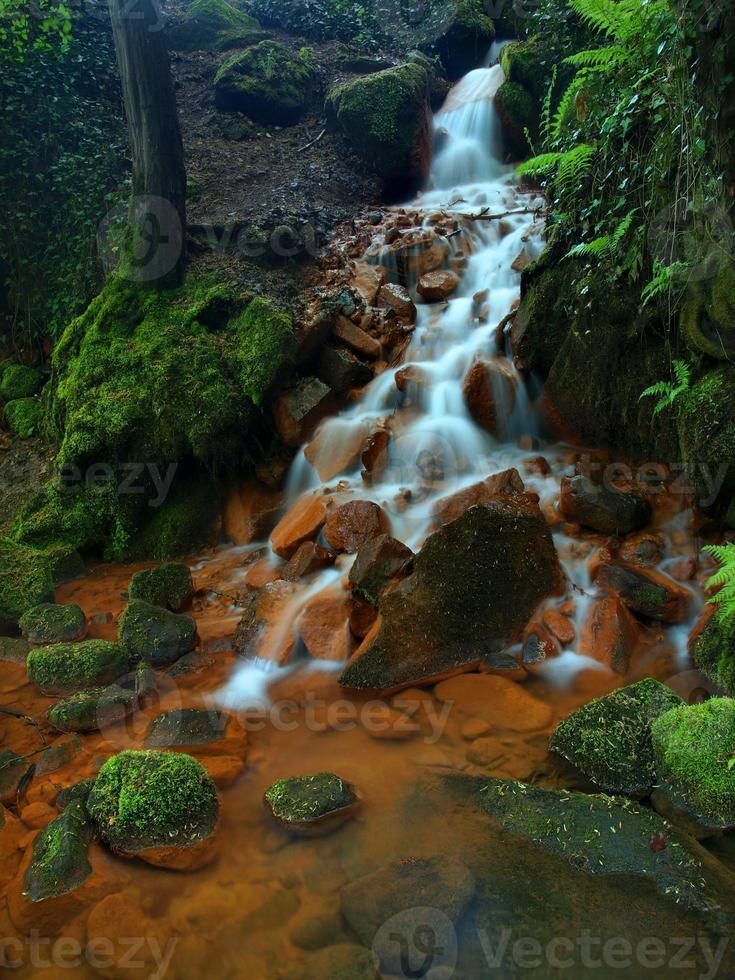 cascate in rapido flusso di acqua minerale. sedimenti ferrici foto