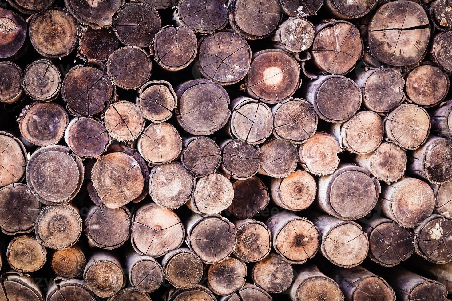 ceppo di legno texture di sfondo foto