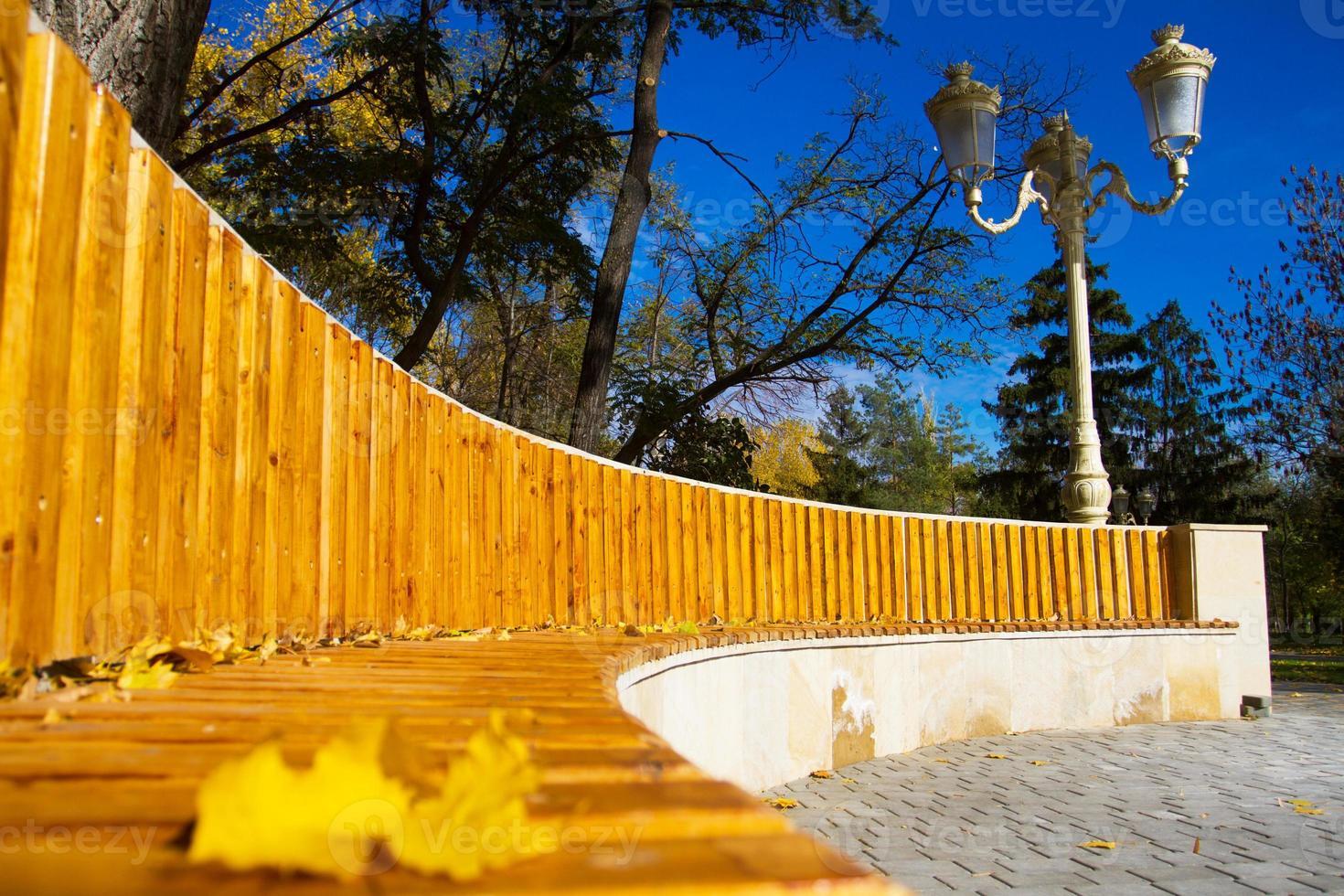panca di legno nel parco d'autunno foto