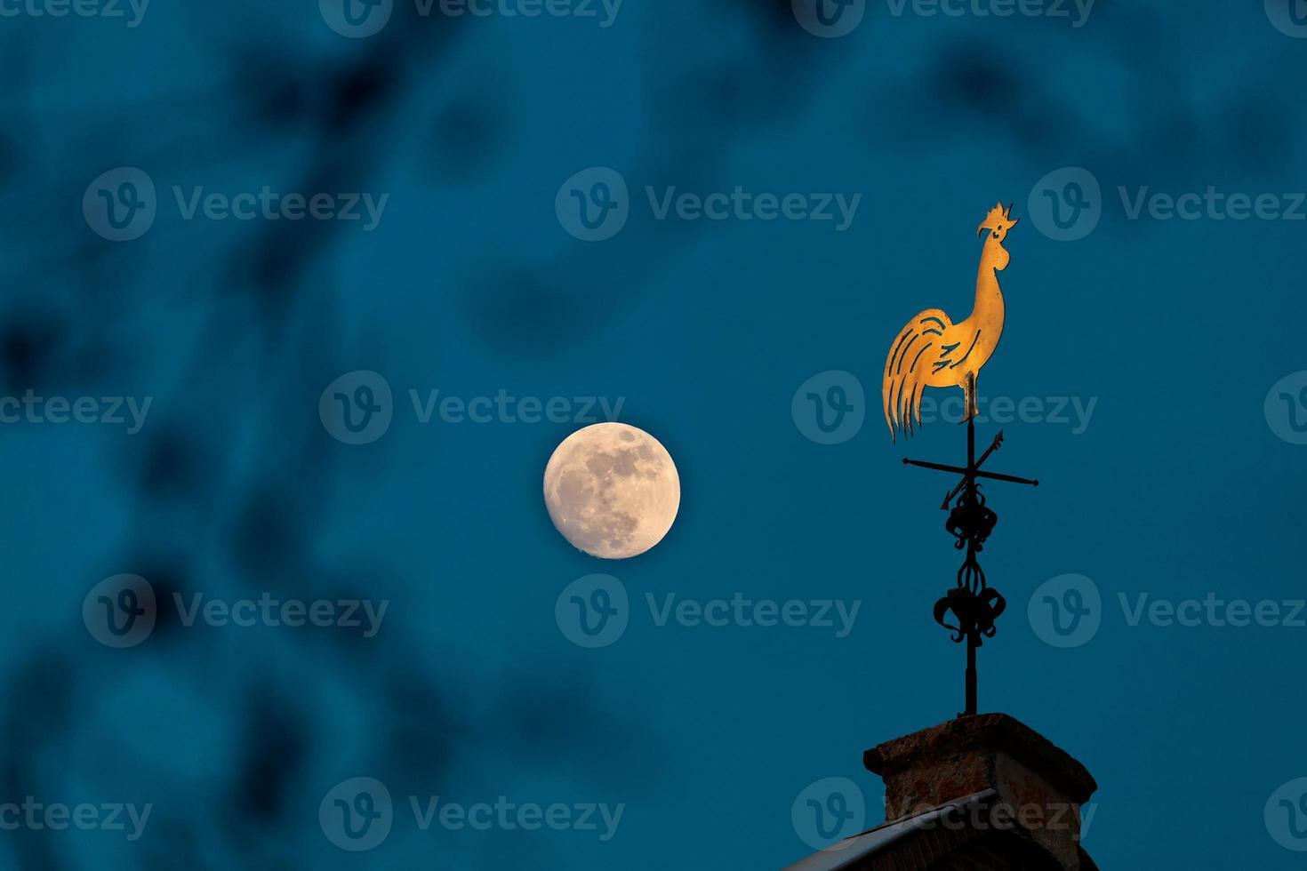 monumentale banderuola di rame al chiaro di luna foto