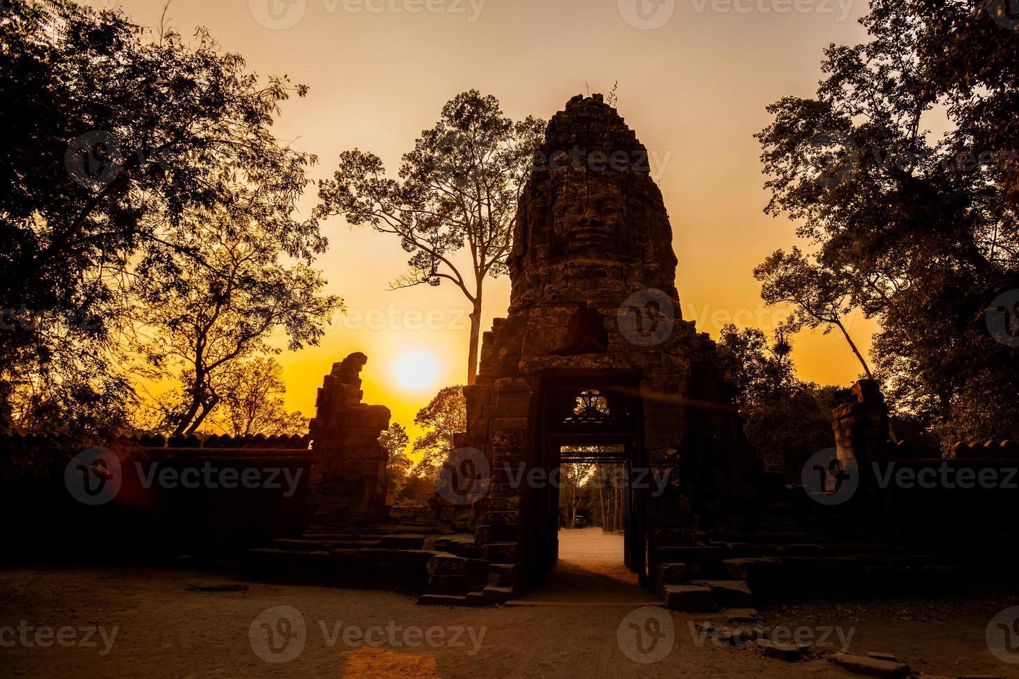 ta prohm temple angkor wat foto
