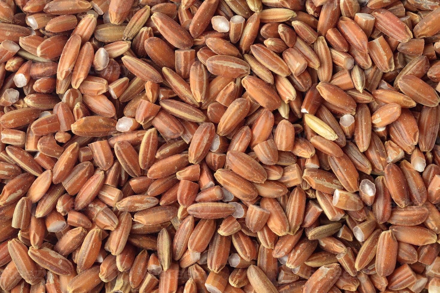 riso rosso biologico foto