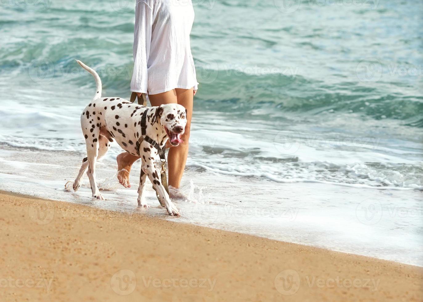 ragazza con un cane che cammina sul mare foto