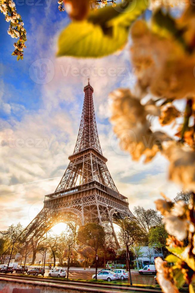 Torre Eiffel durante la primavera a Parigi, Francia foto