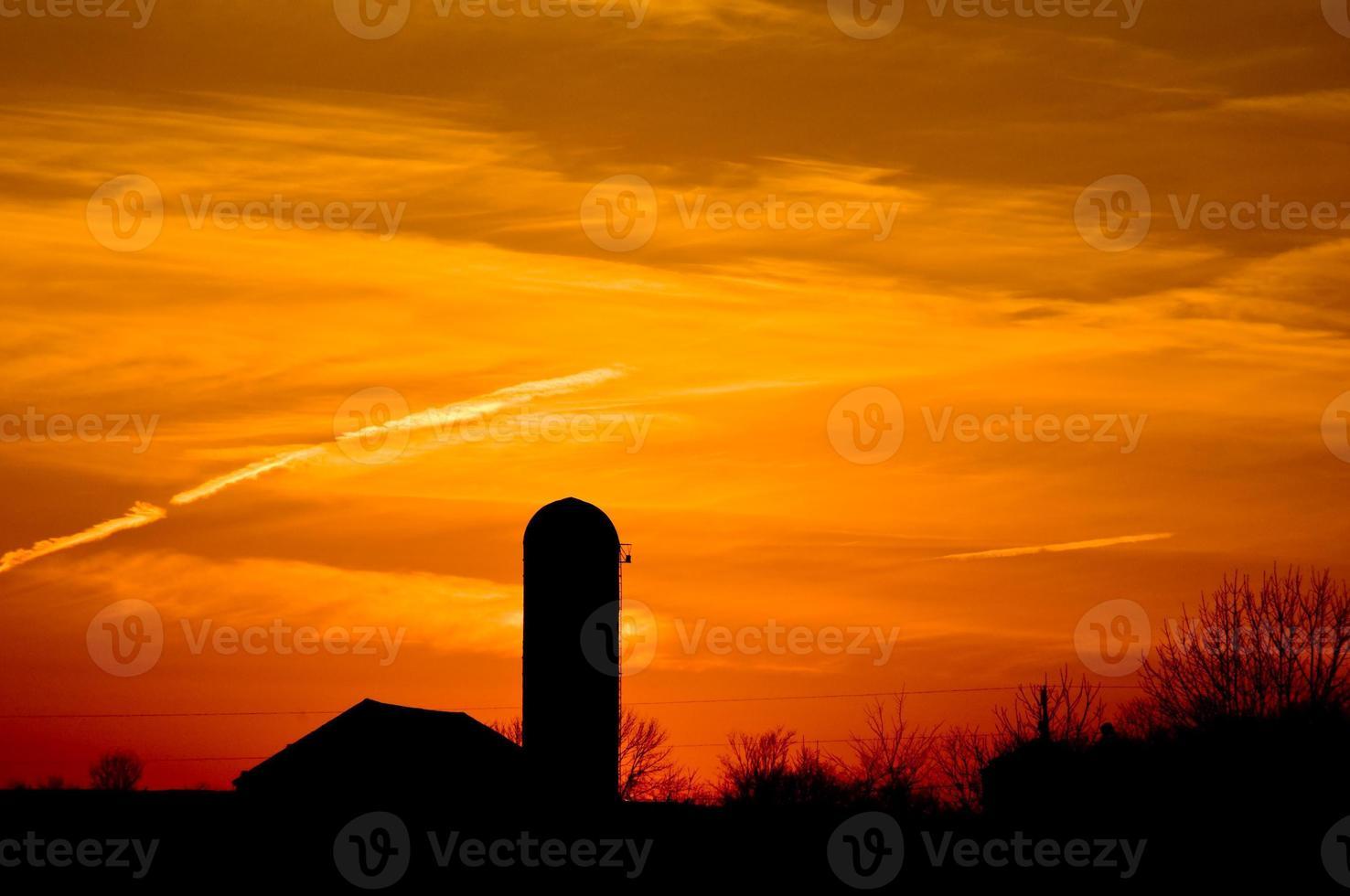 tramonto in fattoria foto
