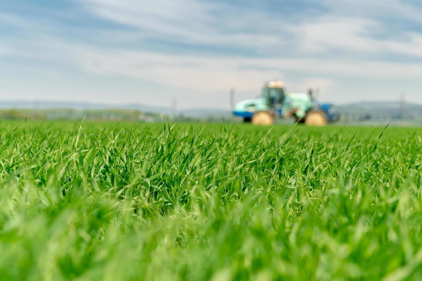 alto campo di erba con trattore offuscata foto
